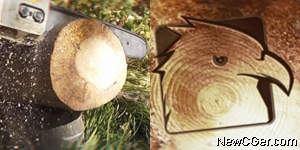 树桩切开后标志在切面显现AE模板